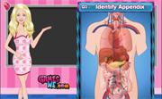 Barbie at Anatomy