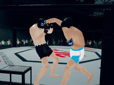 MFS: MMA Fighter