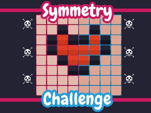 Symmetry Challege